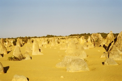 The Pinnacles, Wesern Australia